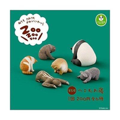 轉蛋休眠動物園5 扭蛋 公仔 玩具 無...