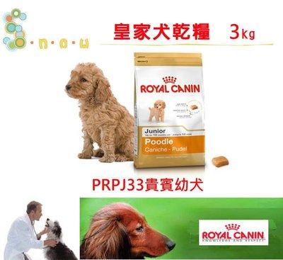 訂購@☆SNOW的家☆法國皇家PRPJ33貴賓幼犬3kg (80070351