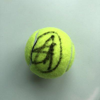 塞爾維亞 小丑球王 Novak Djokovic 簽名球