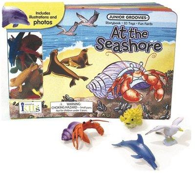 海邊玩具套裝 英文 At the Seashore Board Book (Junior Groovies)  玩具書