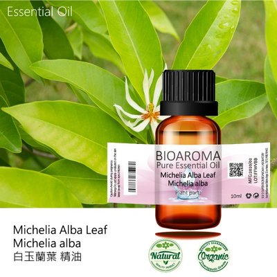 【芳香療網】Michelia Alba Leaf - michelia alba 白玉蘭葉精油 10ml 桃園市