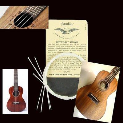 【 本月最超值】 最新義大利 Aquila ululele烏克麗麗專用弦各種規格都有-只賣168快搶!