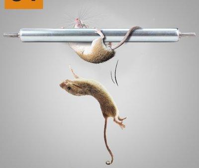 【NF471】滾筒滾輪捕鼠器 第二代 捕鼠棒貨艙 連續抓 自製水桶 滾輪 捕鼠神器 捕鼠器 老鼠籠 補鼠