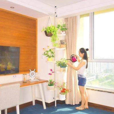 室內客廳陽台花架子家用落地式多層頂天立地懸掛式綠蘿吊蘭花盆架