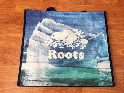 ~☆.•°莎莎~*~☆~~加拿大ROOTS 水彩風景環保袋~現貨(大)