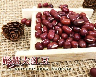 紅豆 台灣本土嚴選超大紅豆 600克 好煮 綿密 超香 紅豆  台灣生產 【全健健康生活館】