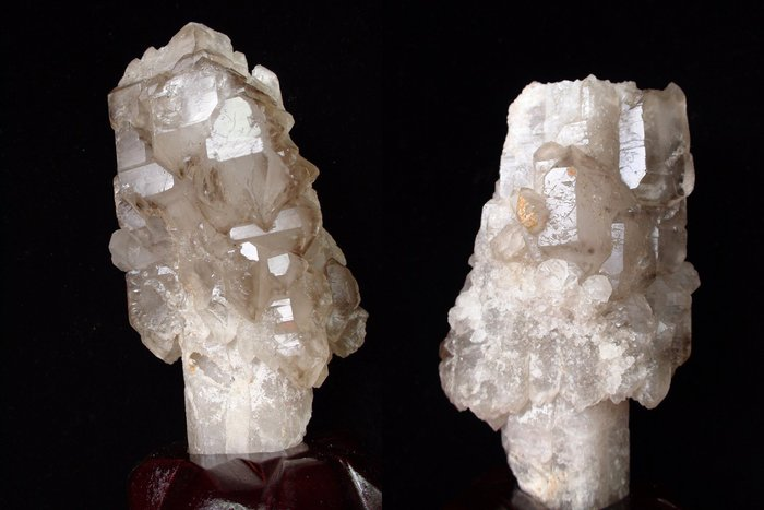 ~shalin-crystal~巴西權杖鱷魚骨幹水晶~0.86公斤~完整度高~除穢聚氣~化煞聚財~低價起標!
