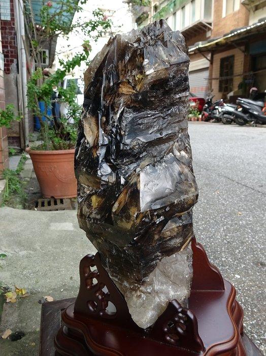 ~shalin-crystal~巴西鱷魚骨幹水晶~9.48公斤~完整度高~除穢聚氣~化煞聚財~低價起標!