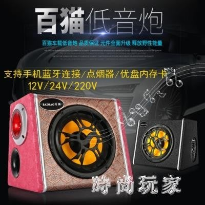 220V車載音響 10寸低音炮重低音汽車專用有源音響 ZB951