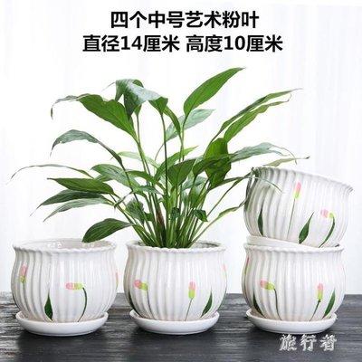 陶瓷花盆 大號特大號蘭花盆大簡約家用塑料綠蘿多肉小花盆 BF22849