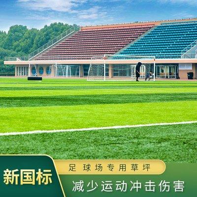 足球場運動場專用地毯免填充人造草坪仿真假草坪戶外塑料足球草地 台北百貨