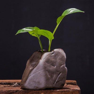 爆款禪意粗陶綠蘿水培花瓶小清新石頭裝飾品桌面擺件迷你日式復古花器#簡約#陶瓷#小清新