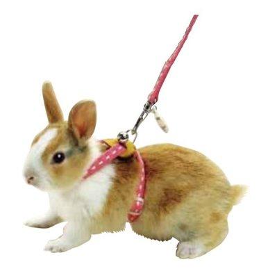 MARUKAN 寵物兔X型 胸背帶 蹓兔牽繩 兔牽引繩 拉繩 工字胸帶 H帶 8字胸背帶(大)MW-20P,每件329元
