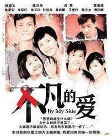【不凡的愛】陳漢偉 鄭惠玉 20集2碟DVD