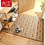地墊門墊進門入戶門墊子地毯臥室客廳家用門...