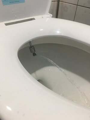 蝴蝶衛浴~附發票~手動式免痔裝置,沖水.洗淨,衛生,