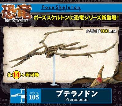 哈哈日貨小舖~日本 rement Pose Skeleton 恐龍系列 無齒翼龍 玩具 模型
