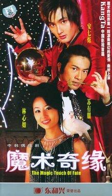 【紅豆百貨】電視劇 魔術奇緣 蘇有朋林心如安七炫VCD 20碟盒裝光盤 精美盒裝