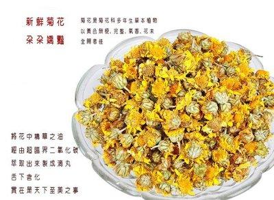 宋家苦茶油chrysanthemumdrop1菊花滴丸.超臨界二氧化碳萃取後.製成滴丸. 本品不宣稱具有任何醫療效果