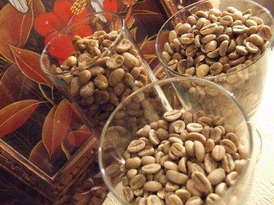 {喜朵浪漫愛飲生活館}-咖啡生豆~依索比亞耶加雪妃Sidamo Area Yirgaa.G1 贈品咖啡豆專用袋2個