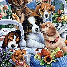 美國拼圖 mas.狗狗 園藝夥伴 庭園 .300片拼圖,31314