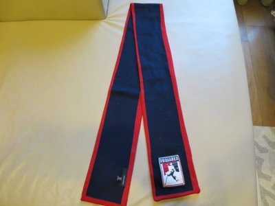 [熊熊之家3] 保證全新正品 Dsquared2 D2 窄板 紅藍色 圍巾