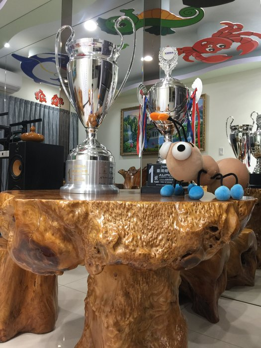 檜木桌 (A級收藏品) 牛樟 雷擊屏風 (天然雷擊牛樟大屏風) 雷擊牛樟