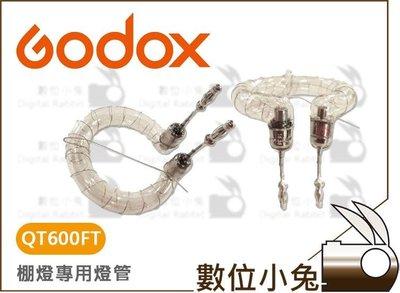 數位小兔【Godox 神牛 QT600FT 燈管 公司貨】環形燈管 QT600 QT400 RS600P 棚燈 閃光燈管