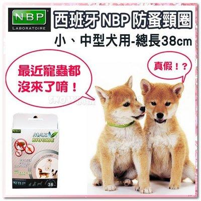 ☆SNOW☆ 西班牙NBP防蚤頸圈-中小型犬用  (82110669