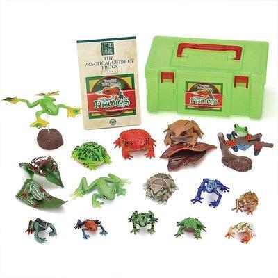 正版 立體圖鑑擬真模型BOX 蛙類 16種組 小模型 小公仔 日本代購