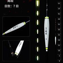 LED電子浮標. 鷹眼 16 LED (送電池) .夜光. 池釣.溪釣 水庫.湖泊.適用~