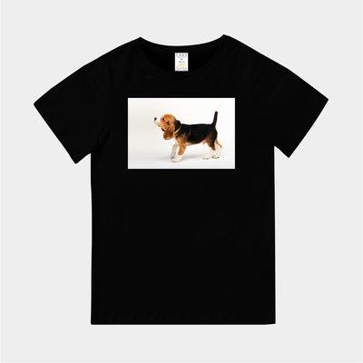 T365 MIT 親子 童裝 情侶 T恤 T-shirt 短T 狗 DOG 汪星人 米格魯 比格犬 Beagle 毛小孩