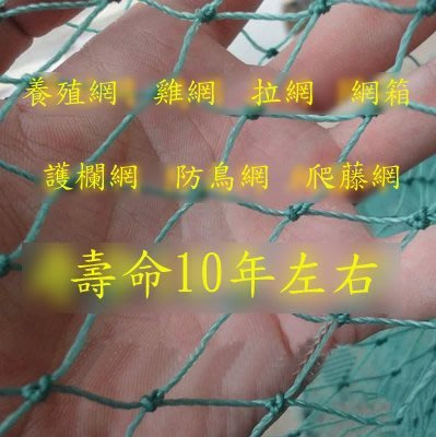 【養殖網-30股3cm-10平方米/組】聚乙烯有結網 尼龍網 防護網家禽網(達最低標後可零購、量大可海運)-76029
