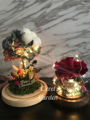 聖誕花樹 保鮮花 永生花 不凋花 花禮 Christmas Collection 聖誕系列