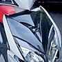 Hz二輪精品 RACING S 水轉印 碳纖維 卡夢 水轉 大盾 前胸蓋 雷霆S RACINGS 125 150 光陽