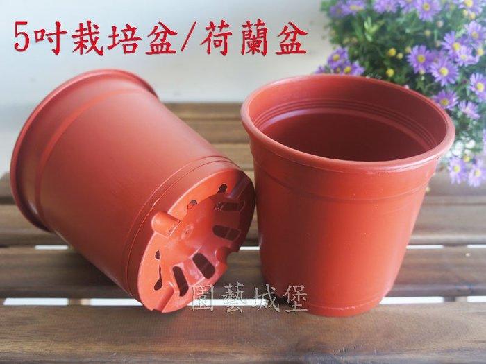 【園藝城堡】5吋栽培盆 荷蘭盆 紅色圓型盆 紅盆  草花用盆 花盆