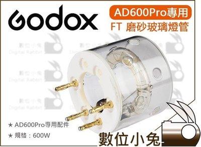 數位小兔【Godox 神牛 AD600Pro FT 600W 磨砂玻璃燈管】燈管 燈泡 閃燈 閃光燈 外拍燈 公司貨