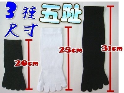 H-1-2素面純棉短五趾襪【大J襪庫】6雙300元20-26cm-五指襪5趾襪五趾襪男襪短襪船襪棉襪隱形襪-除臭襪台灣