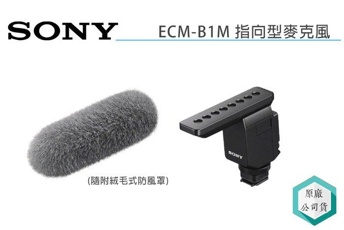 《視冠高雄》SONY ECM-B1M 機頂 指向型麥克風 附防風罩 收音 錄音 公司貨 A7III A7SIII