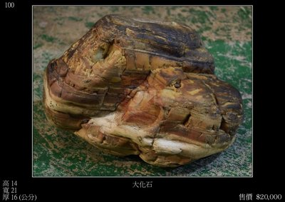 【四行一藝術空間 】原石擺件‧大化石 高14X寬21X厚16 CM 售價 $20,000