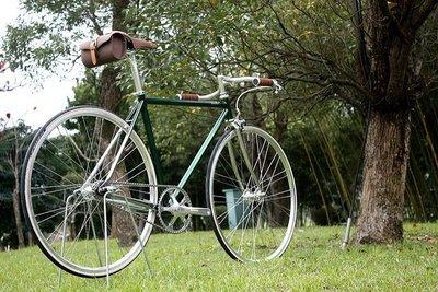 【cavalli shop】班納德 Bannard Apollo 單速車 鋼管電鍍