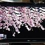 大台北  asus 華碩  26吋螢幕 26吋 螢幕 vw266h 畫面異常 故障維修 液晶螢幕專業維修