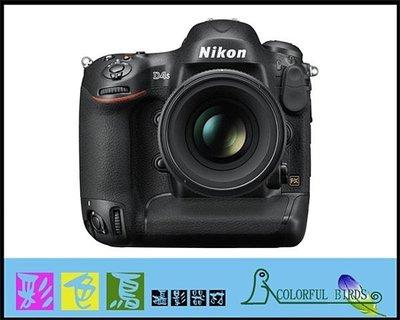彩色鳥(相機出租 租相機 鏡頭出租 租鏡頭)租 Nikon D4S + Nikon 70-200mm F4 VR D4