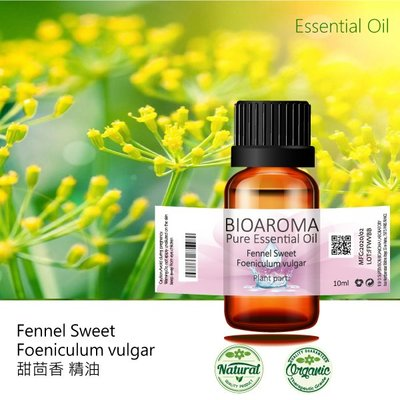 【芳香療網】Fennel Sweet - Foeniculum vulgar 甜茴香精油 10ml