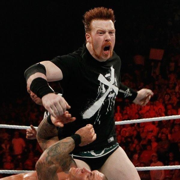 ☆阿Su倉庫☆WWE摔角 Sheamus Laoch T-Shirt 愛爾蘭英雄絕版款 M號現貨 限量特價出清中