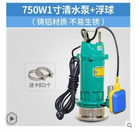 抽水潛水泵家用自吸抽水機220V全自動農用高揚程灌溉排汗水泵