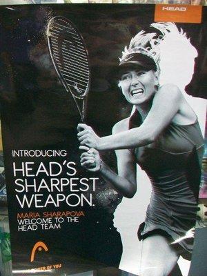 ***總統網球***(自取可刷國旅卡) HEAD MARIA SHARAPOVA 莎拉波娃 海報