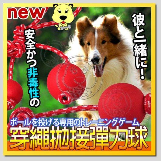 【幸福培菓寵物】dyy》安全耐咬拋穿繩彈力球玩具m號直徑6cm 特價99元
