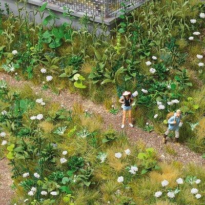 傑仲 博蘭 公司貨 BUSCH Weed Wildfower set (plants) 1227 HO