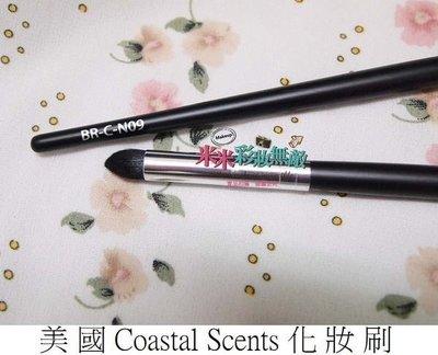 【米米彩妝無敵】美國原裝 Coastal Scents 化妝刷 馬毛 眼影刷 眼窩刷 圓錐 N09 新秘 特價180元